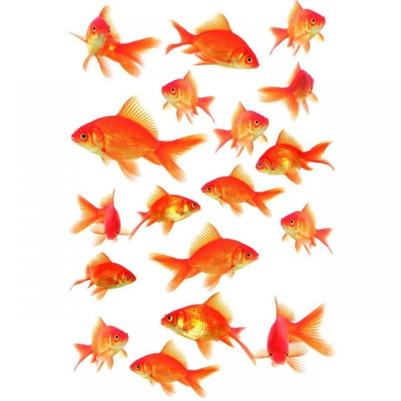 Sticker static decorativ Fish 15x23.5 cm (18 pesti) cod 34017