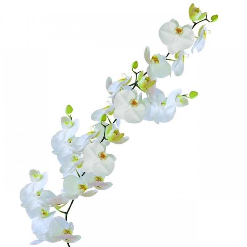 Sticker static decorativ Orhidee 23x68 cm cod 34009