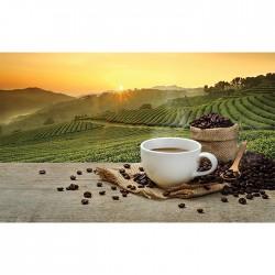 Covoras bucatarie Davo Pro Coffe Sun nylon bej si maro dreptunghiular 67x120cm cod 33022