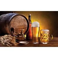 Covoras bucatarie Davo Pro Beer nylon fond maro dreptunghiular 67x120cm cod 33023