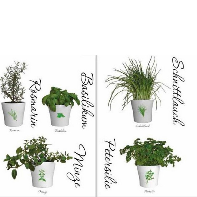 Sticker Friedola Herbs (2 Bucati/ Set) 45 X 65cm